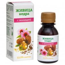 Живица кедровая 12,5% на кедровом масле с экстрактом эхинацеи, 100мл